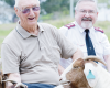 Goats and innovation in aged care