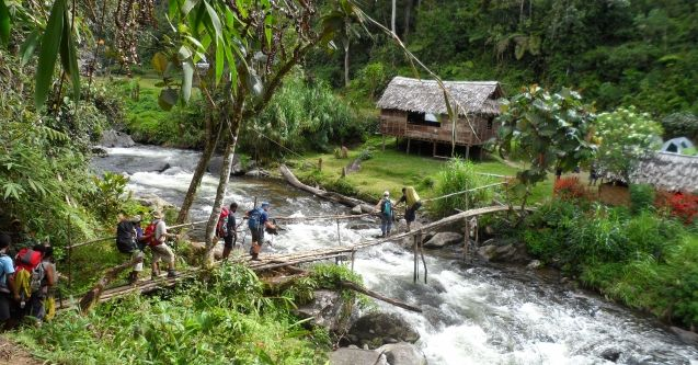 People crossing a bridge over running water on the Kokoda Track