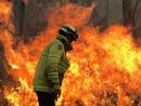 Bushfire disaster in NSW and QLD, rural firefighter.