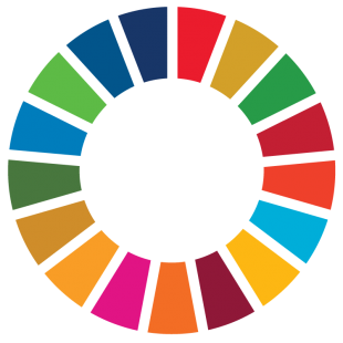 UN Sustainable Development wheel