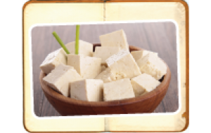 Training in Tofu Making